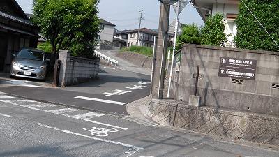 IMGA0815.2017.5.31.jpg