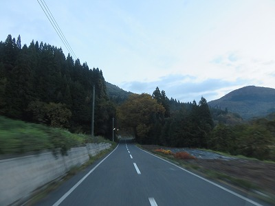 IMG_6551.jpg
