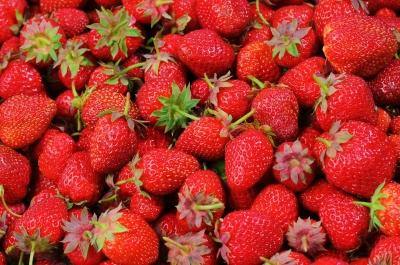 strawberries-528791_1280[2].jpg