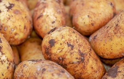 potatoes-4059963__480[1].jpg