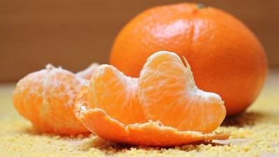 tangerines-1721590__480[1].jpg