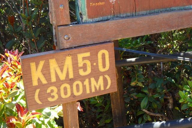 P3200351.jpg