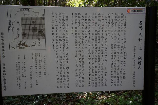 DSC01503.jpg