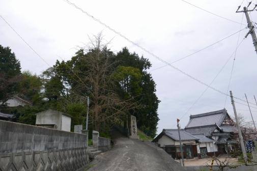 P1000678.jpg