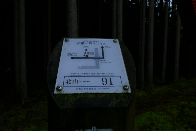 P1080461.jpg