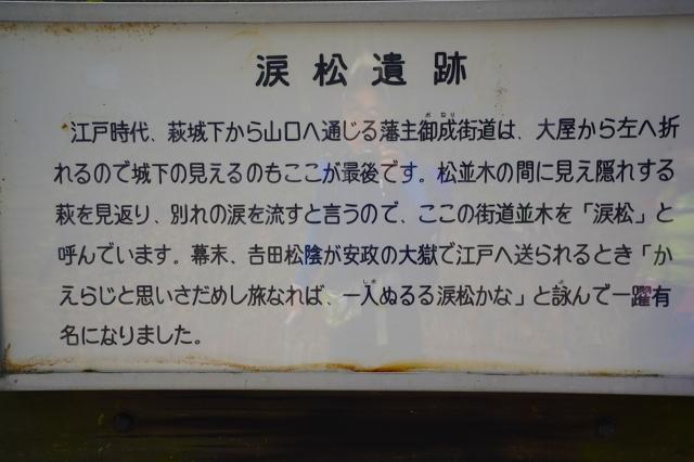 _DSC2013.jpg