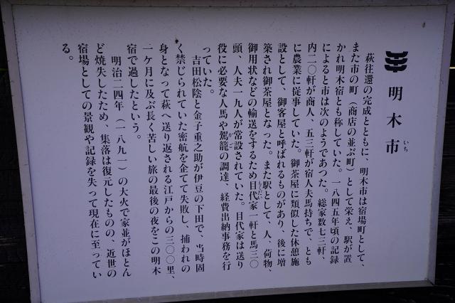 _DSC2071.jpg