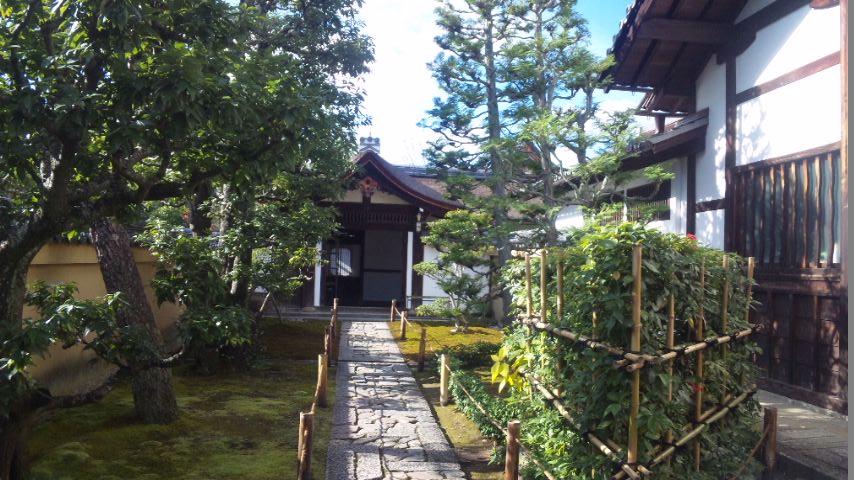 狩野松栄の画像 p1_10