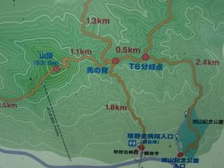 110806-02藻岩山.JPG
