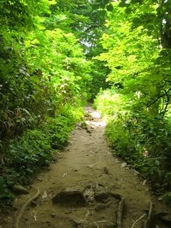 110806-05藻岩山.JPG