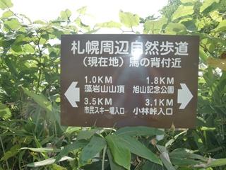 110806-12藻岩山.JPG