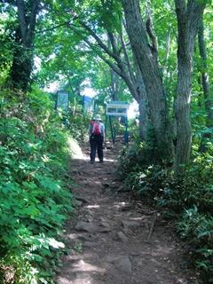 110806-19藻岩山.JPG