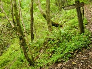 110924-04有明の滝.JPG