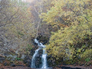 111021-14白糸の滝.JPG