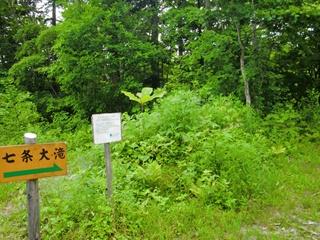 120701七条大滝10.JPG