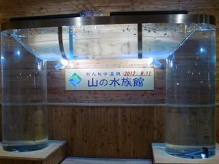 120911-35山の水族館.JPG