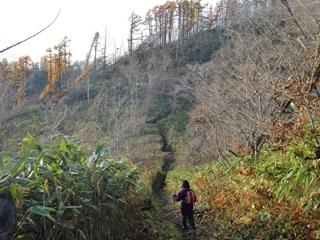 121111-06藻岩山.JPG