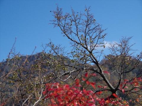 141012-45神居尻山.JPG