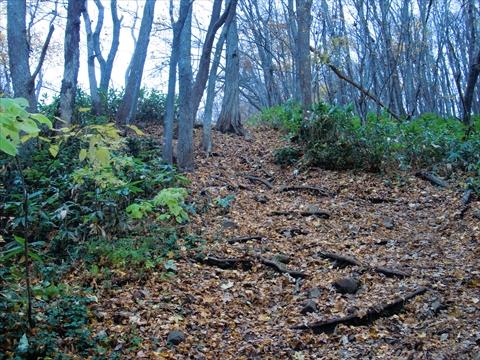 141101-23藻岩山.JPG