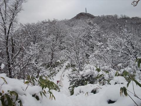 141115-12藻岩山.JPG