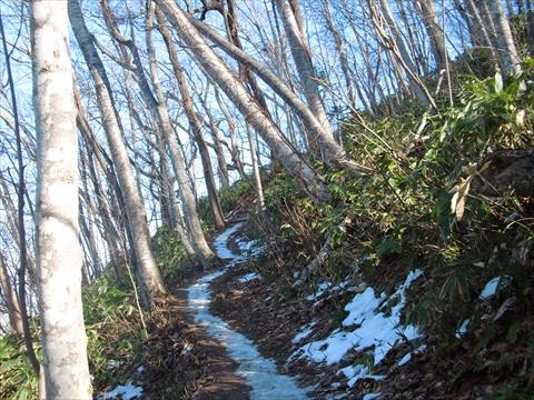141123-03藻岩山.JPG