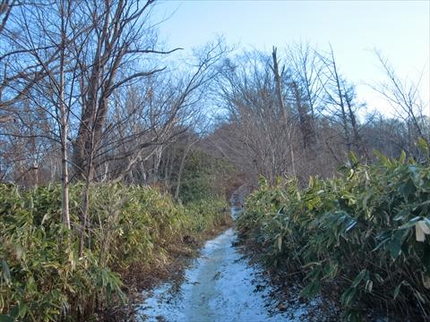 141206-04藻岩山.JPG