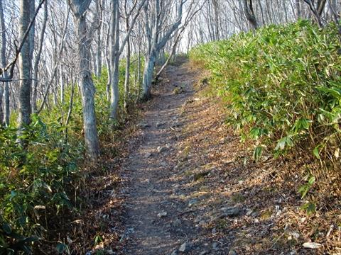 141206-09藻岩山.JPG