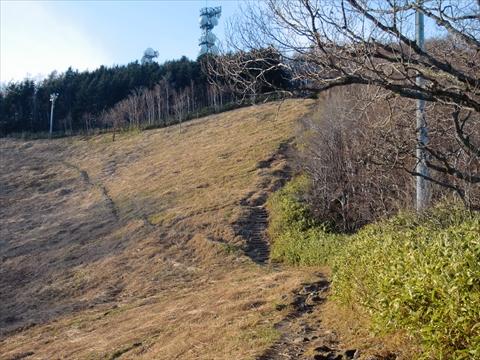 141206-11藻岩山.JPG