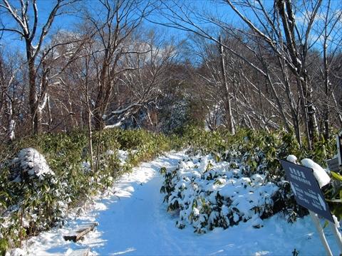 141214-04藻岩山.JPG