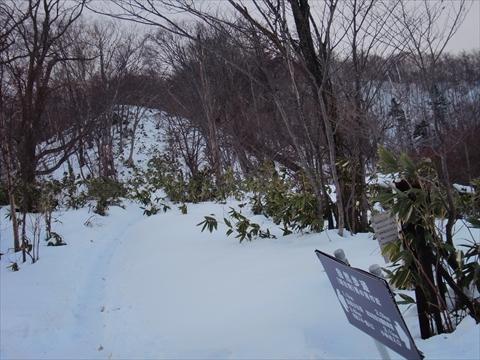 141221-03藻岩山.JPG