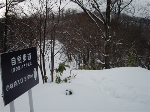141227-07藻岩山.JPG