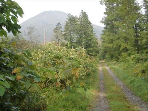 150924-02羊蹄山.JPG