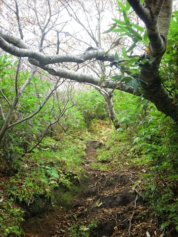150924-09羊蹄山.JPG