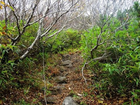 150924-17羊蹄山.JPG