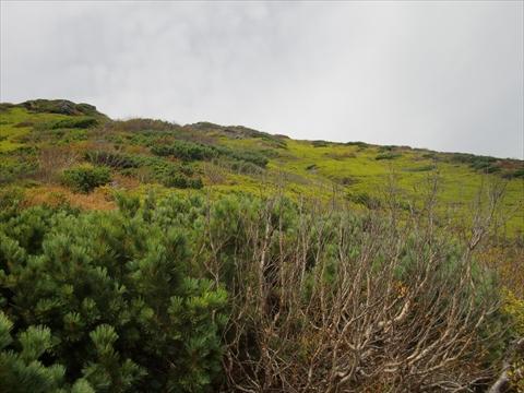 150924-20羊蹄山.JPG