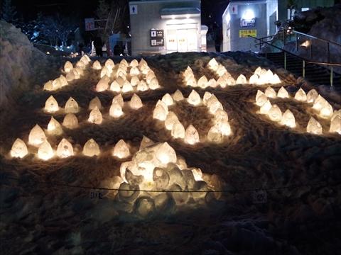 160211-41旭山動物園.JPG
