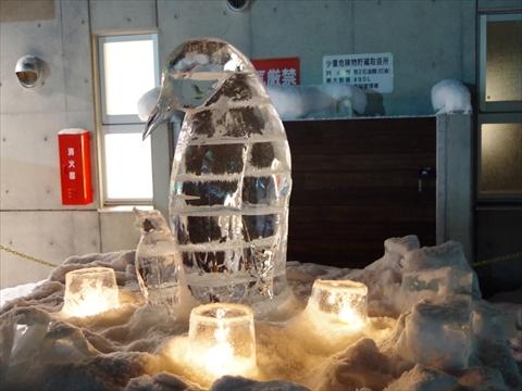 160211-46旭山動物園.JPG