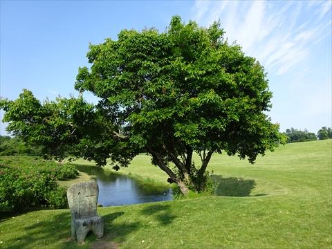 160716-69六花の森.jpg