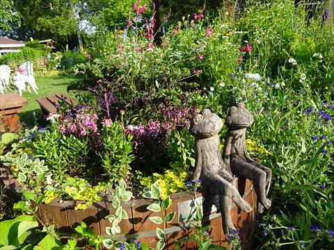 160716-76紫竹ガーデン.jpg