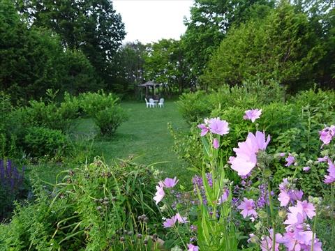 160716-80紫竹ガーデン.jpg
