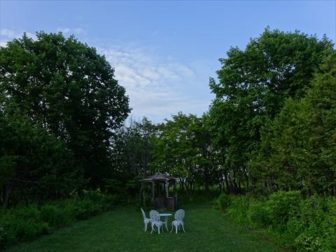 160716-81紫竹ガーデン.jpg