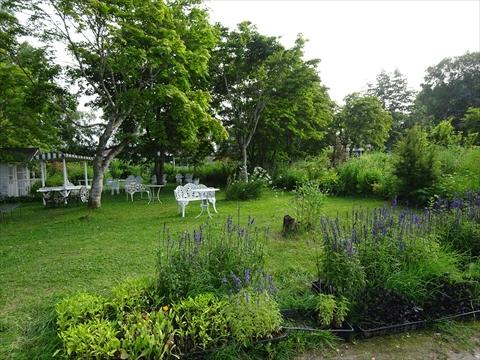 160716-86紫竹ガーデン.jpg