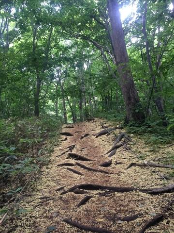 160730-06三角山.jpg