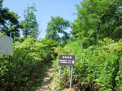 160813-03藻岩山.JPG