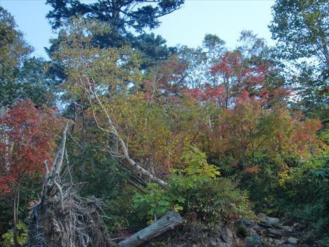 161001-08札幌岳.JPG