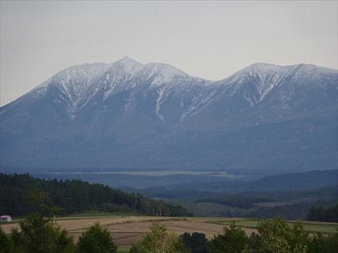 161008-41四季彩の丘.jpg