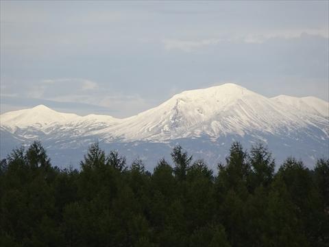 161008-42四季彩の丘.jpg
