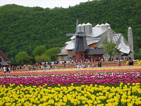 170521-01かみゆうべつチューリップ公園.jpg