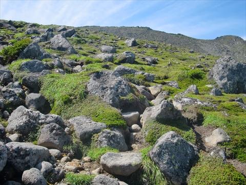 170730-43登山.JPG