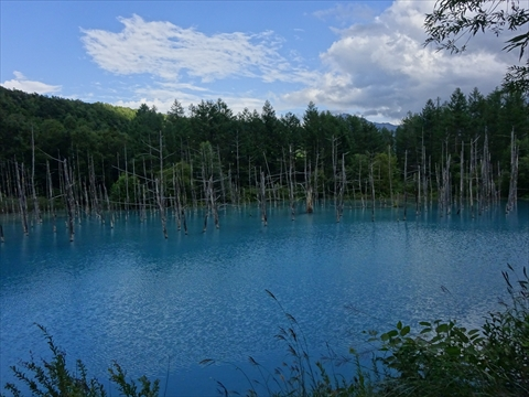 170826-51青い池.jpg